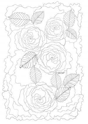 Раскраска с цветы Розы