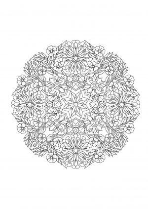 Раскраска цветы в круге распечатать