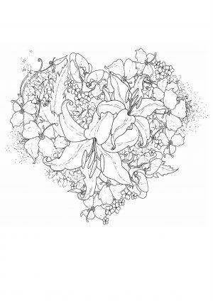 Раскраска для взрослых антистресс цветы лилии в виде сердца
