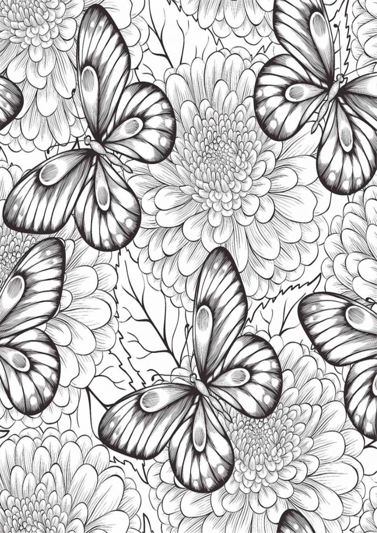 Раскраска с бабочками